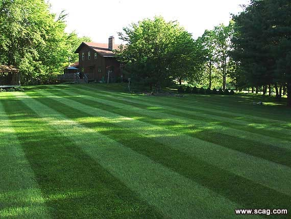 Clark's Lawn Care and Services