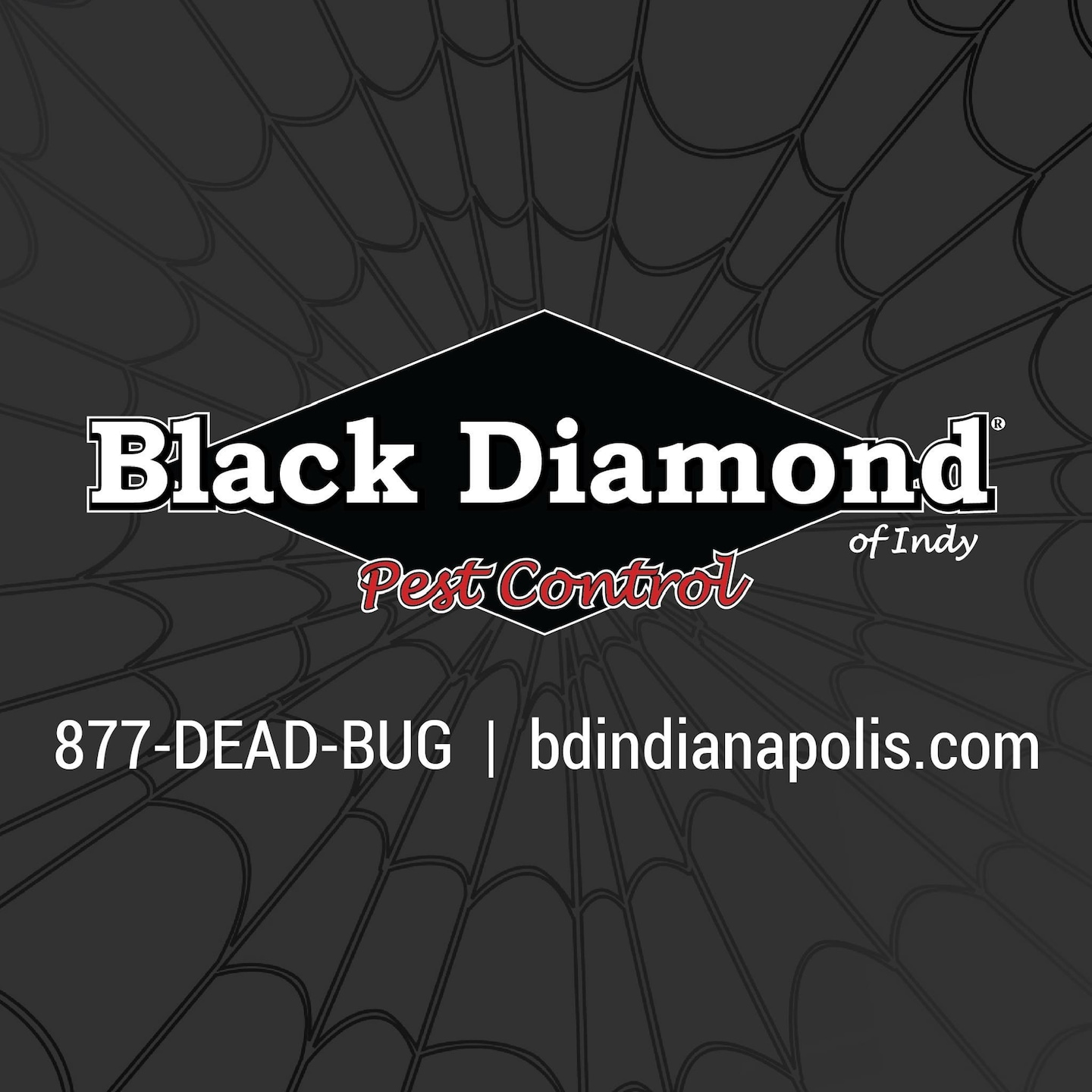 Black Diamond of Indianapolis