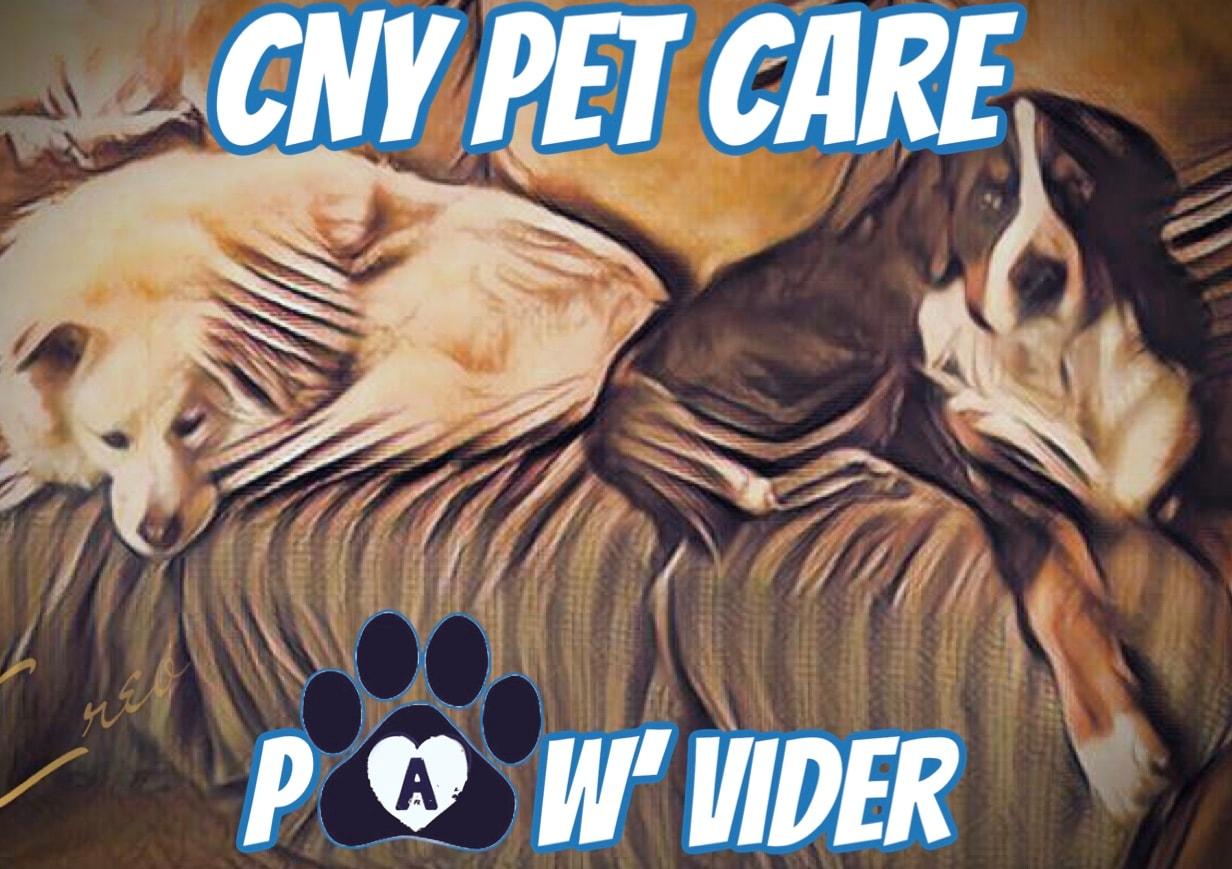 cny pet care