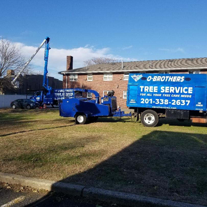O'Brothers Tree Service LLC