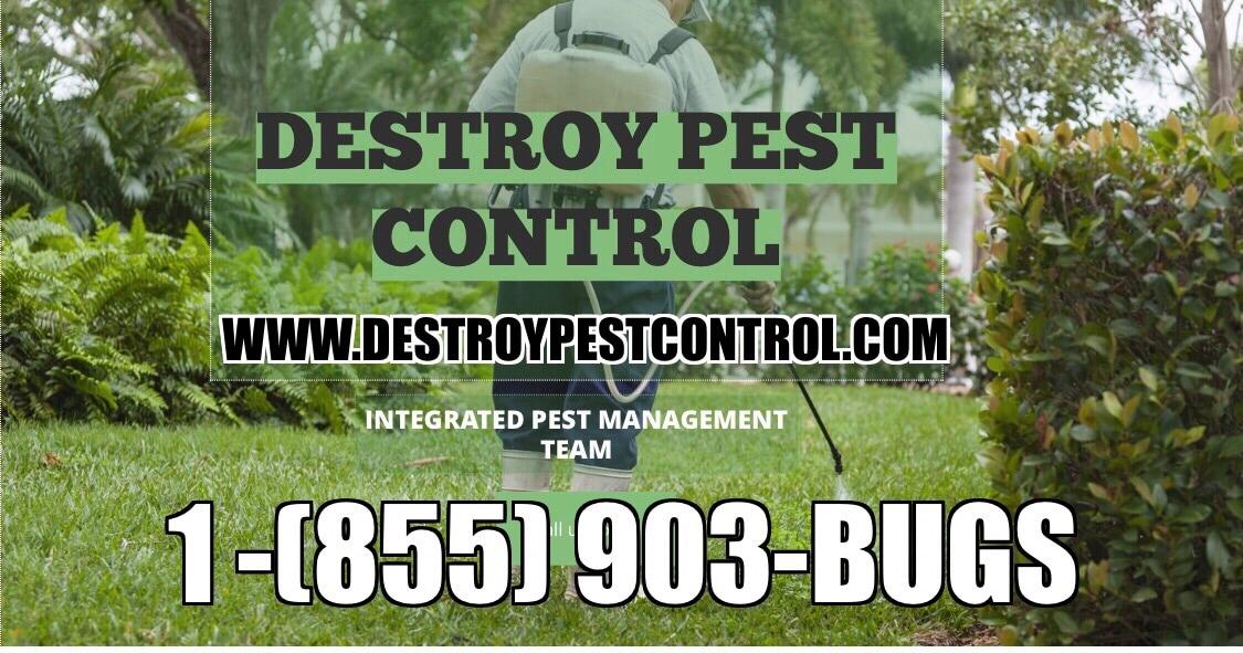 Destroy Pest Control
