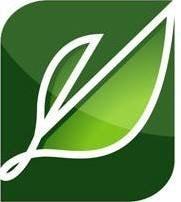 Landscaping Pros llc