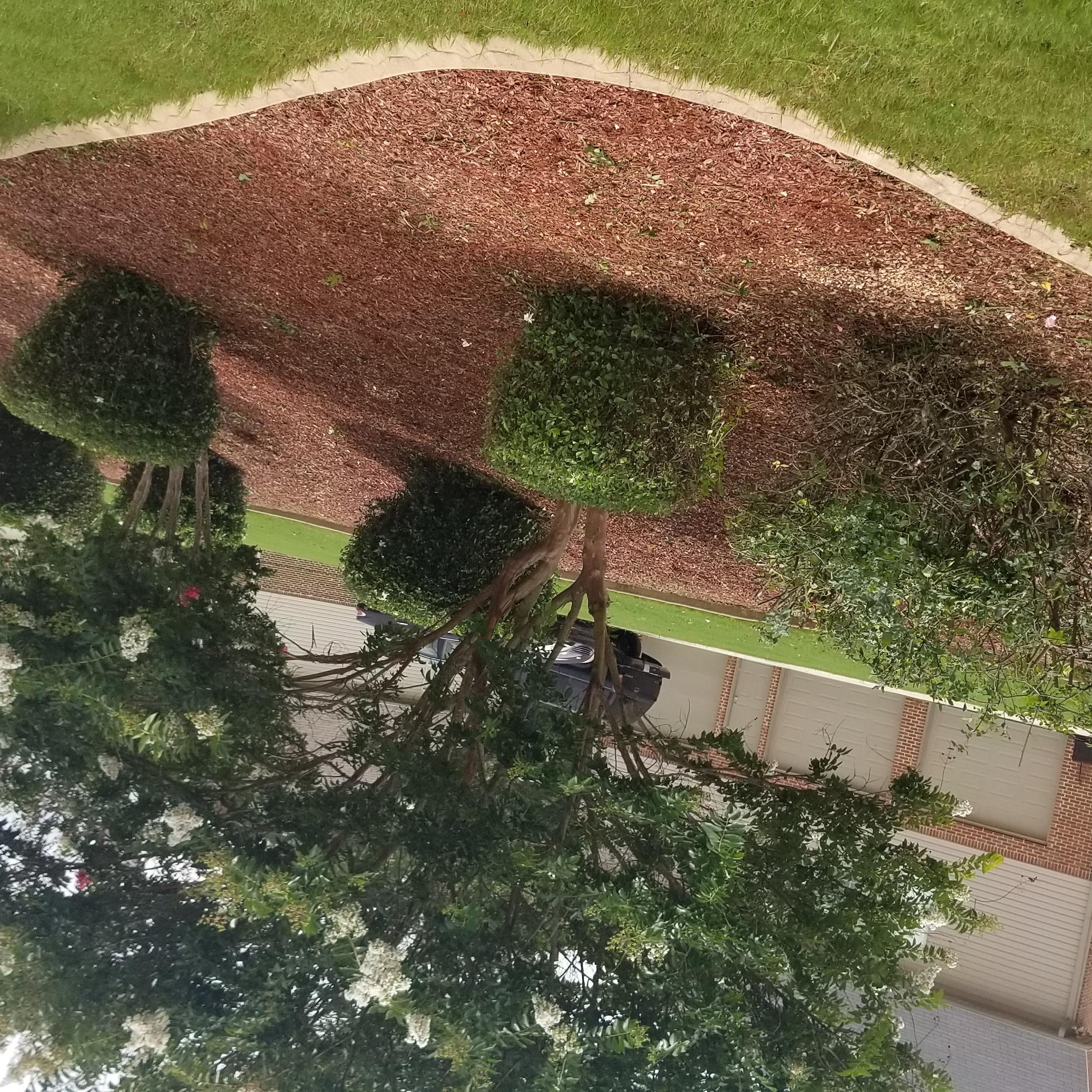 A J Seasonal Lawn Care