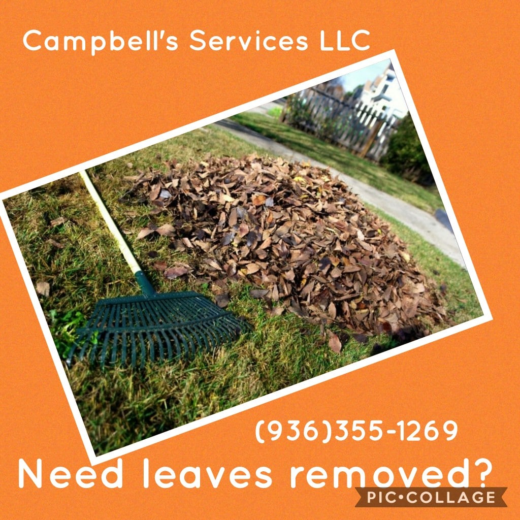Campbell's Services LLC