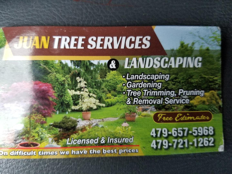 Juans tree service