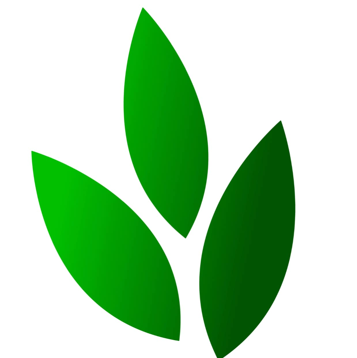 Springhill Landscaping LLC