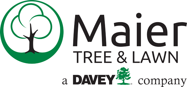 Maier Tree & Lawn Service