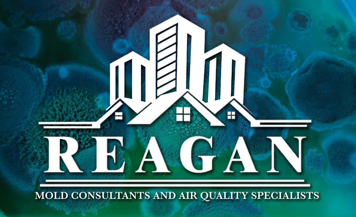 Reagan Mold Consultants & Air Quality Specialists