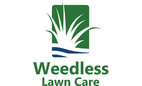 Weedless Lawn Care