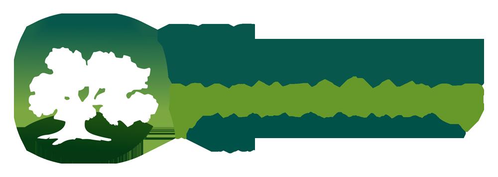 Design Tree Maintenance Inc