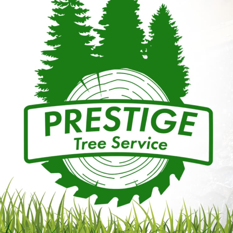 Prestige Tree Service LLC