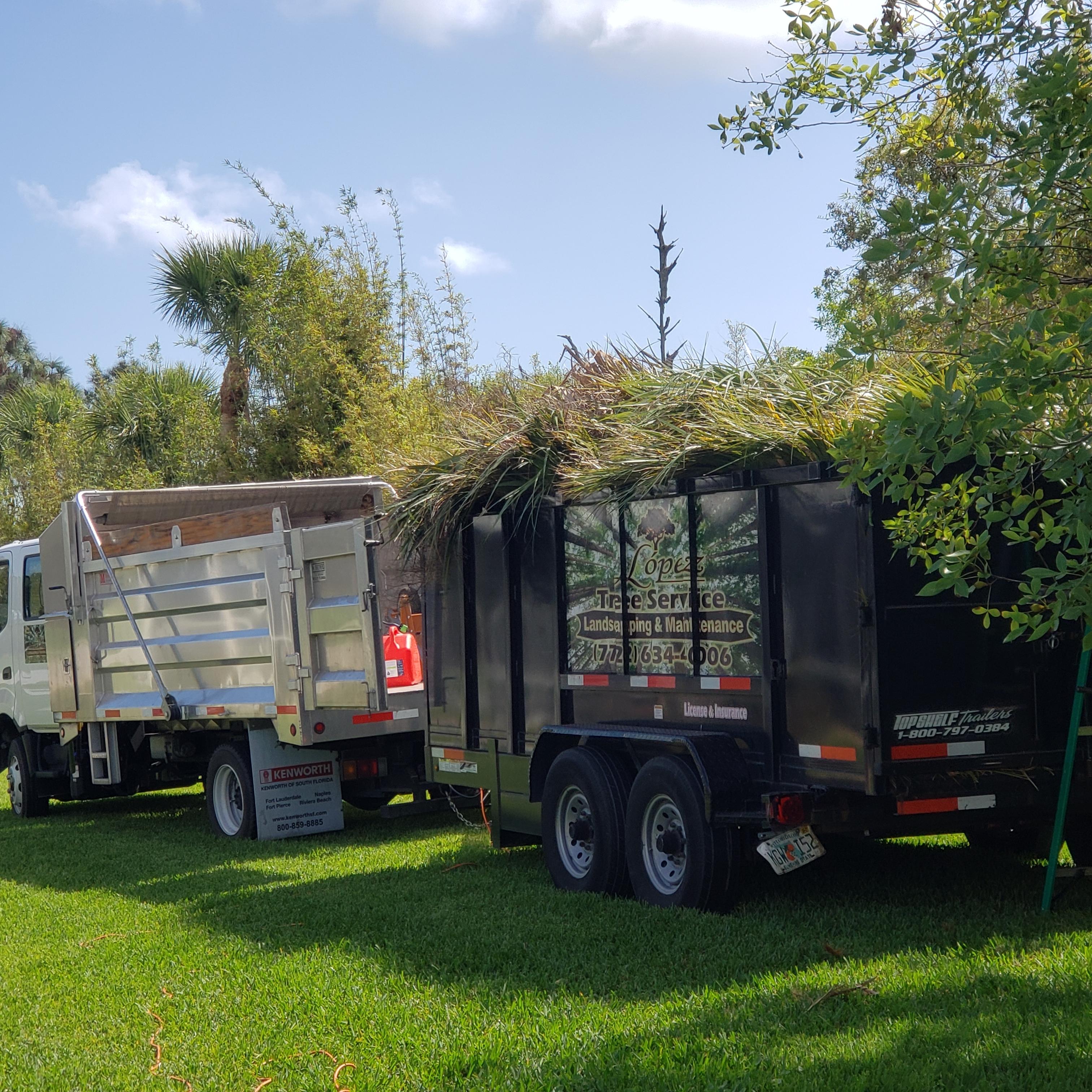 Lopez tree service inc