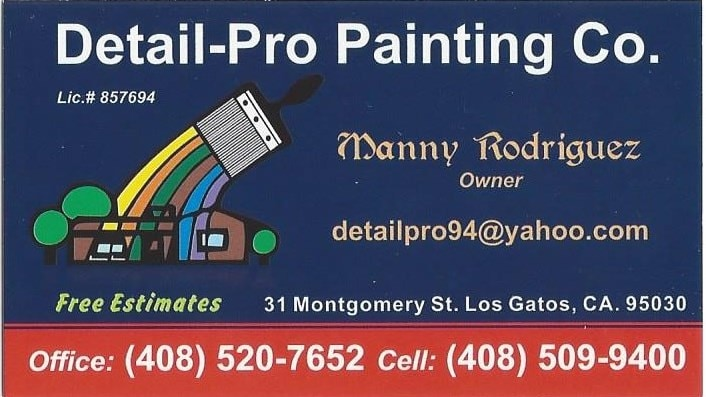 Detail Pro Painting