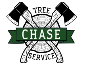 Chase Tree Service