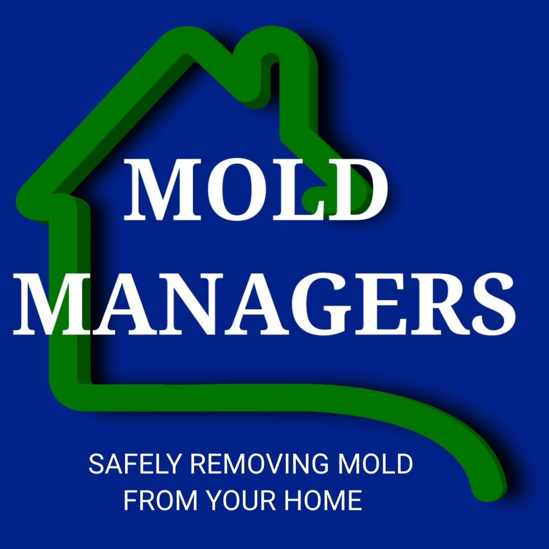 Mold Managers