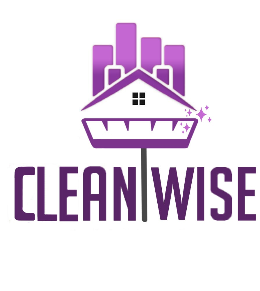 Clean Wise