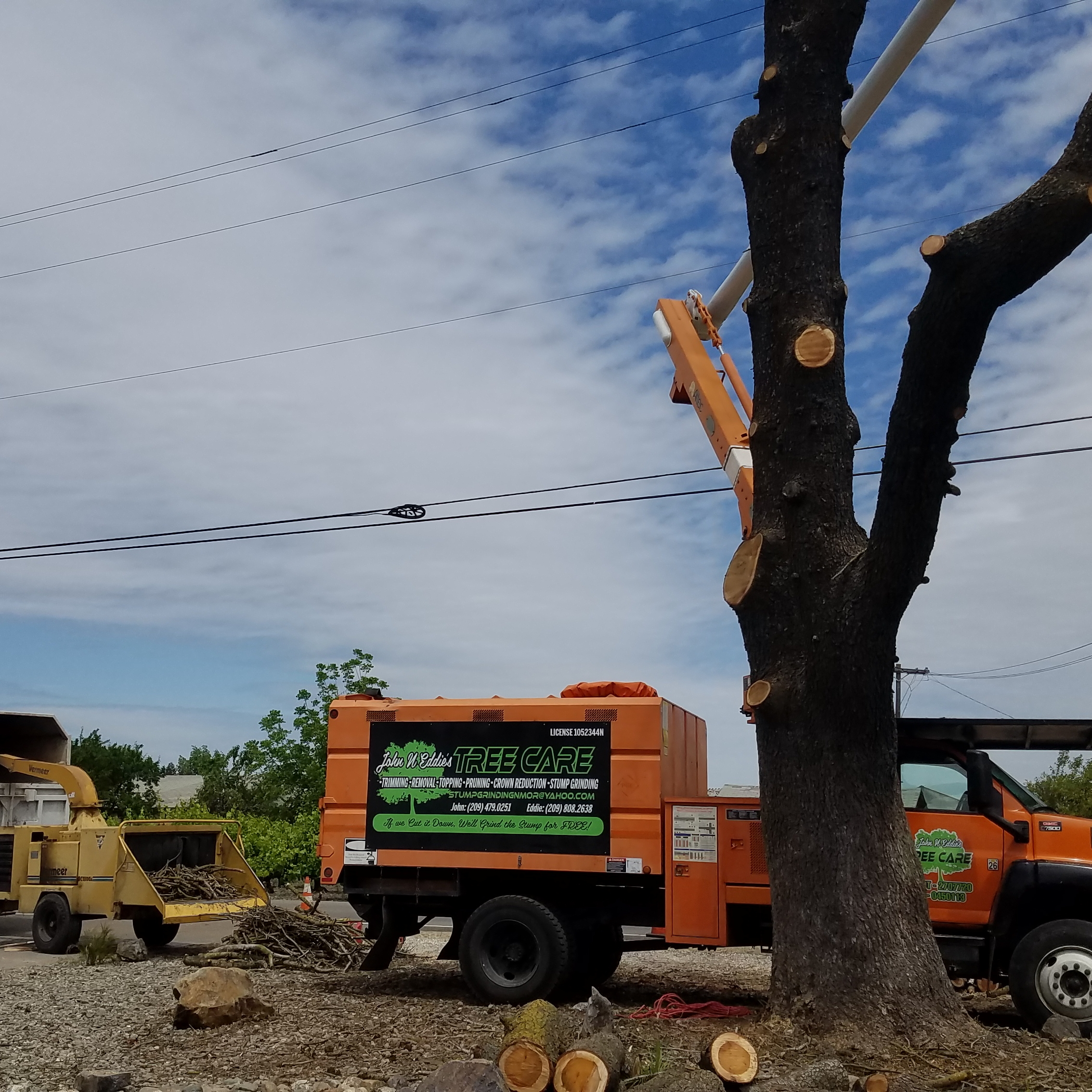 John N Eddie's Tree Care