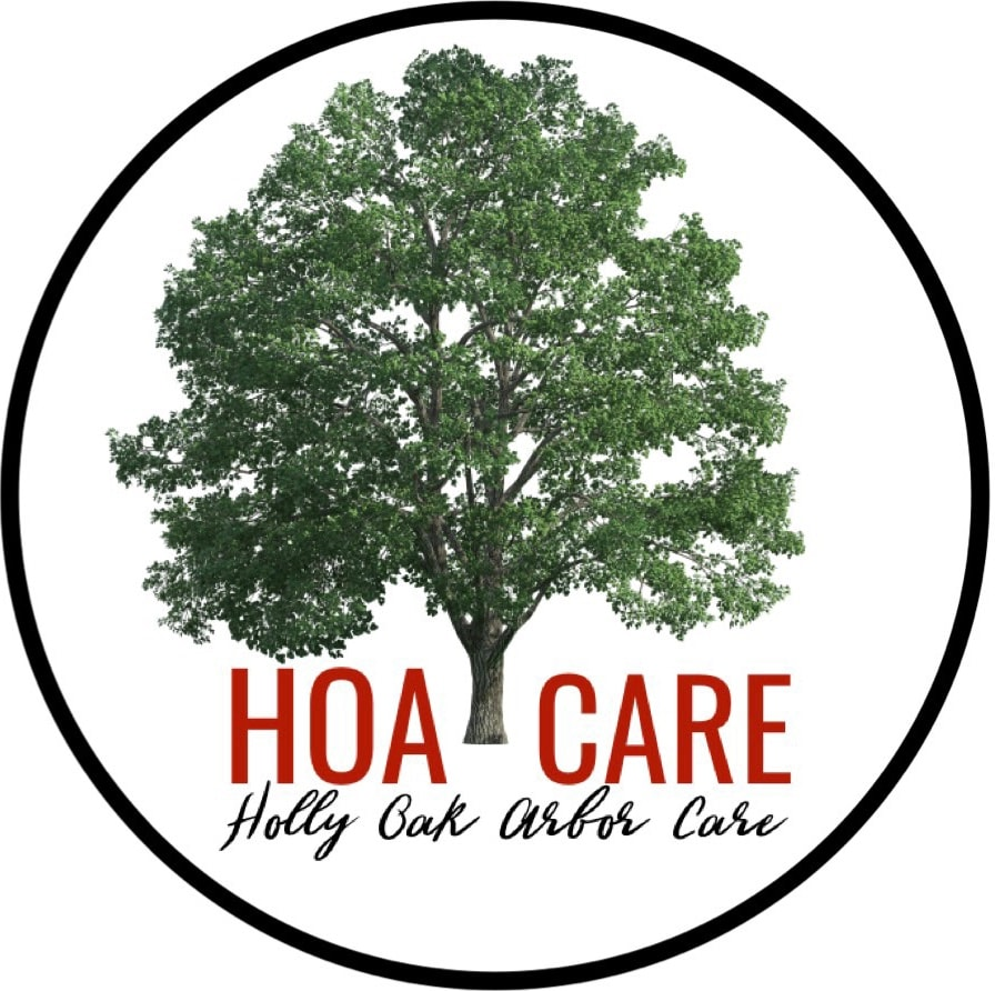 Holly Oak Arbor Care