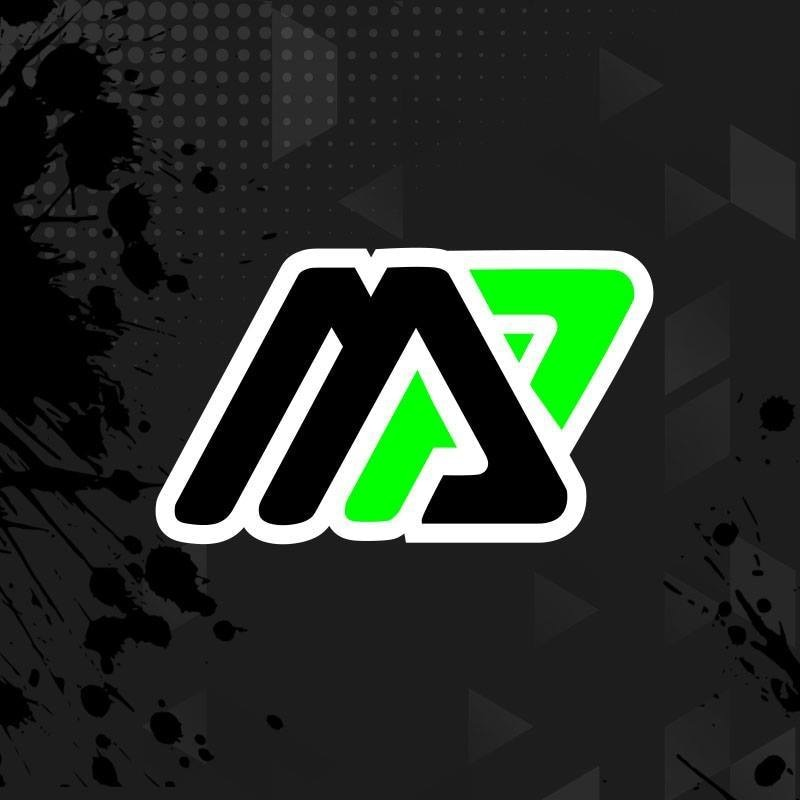 Mold Pros LLC