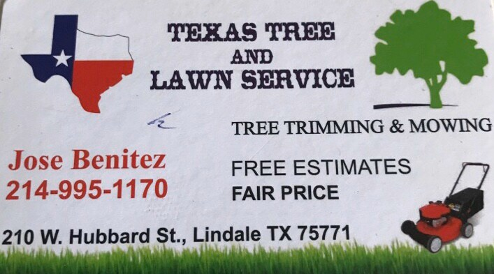Texas Tree and Lawn Services