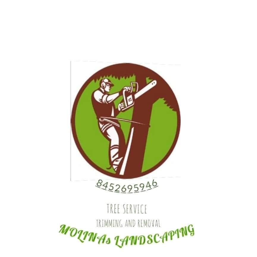 Molina's Landscaping & Tree Service
