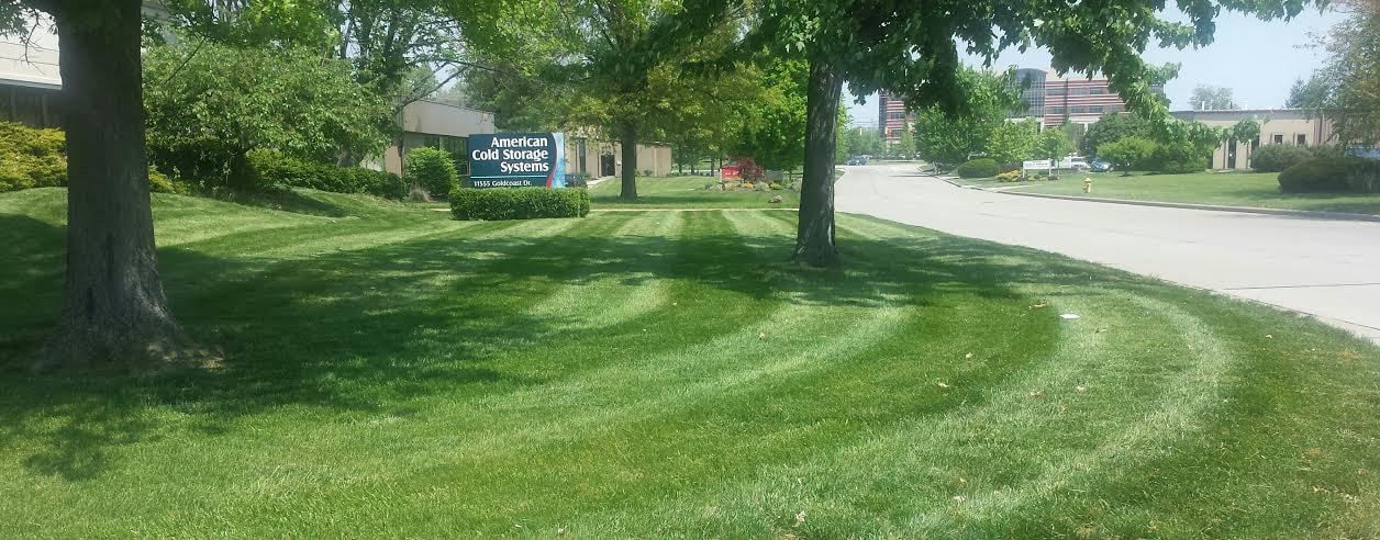 Diamond Lawn & Landscape LLC
