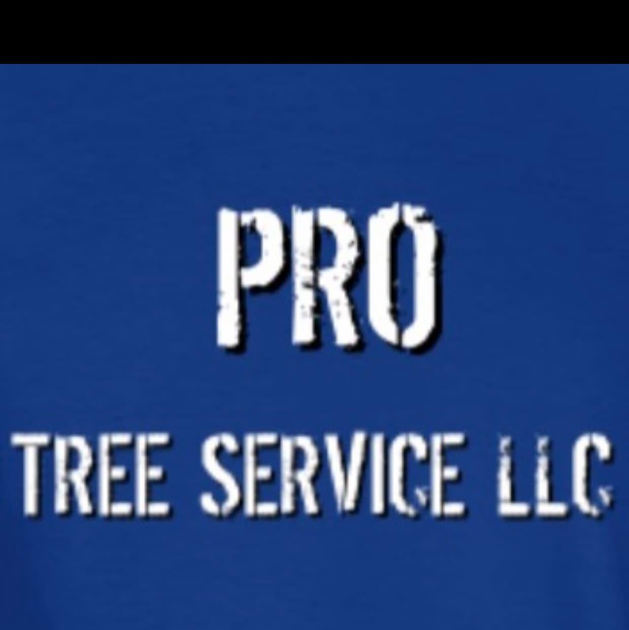 Pro Tree Service LLC.