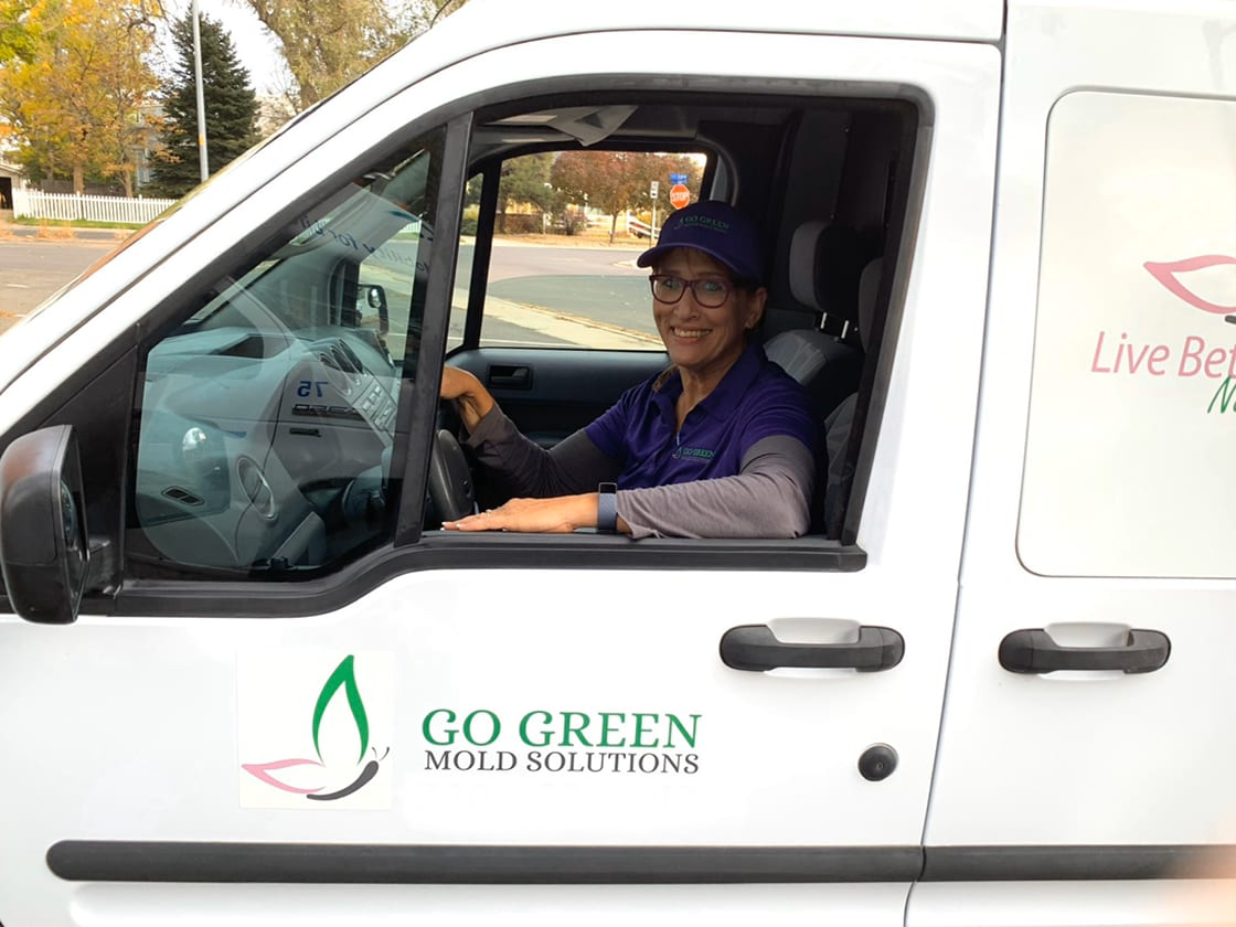 Go Green Mold Solutions LLC