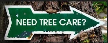 Dyer's Tree Service