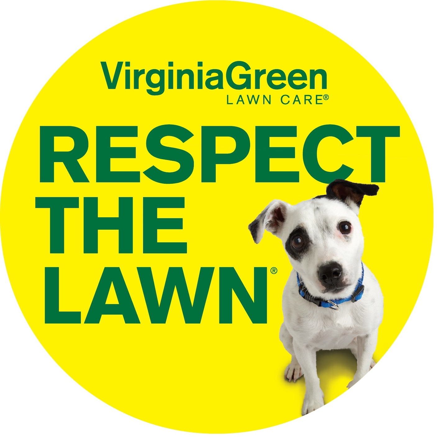 Virginia Green Lawn Care