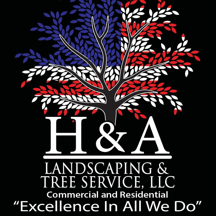 H & A Landscaping And Tree Service LLC