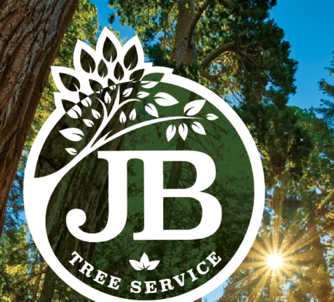 jb tree serice