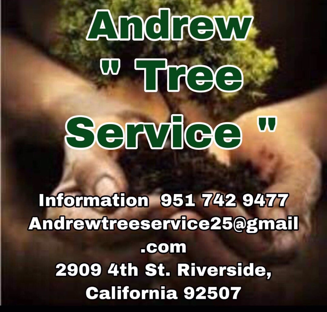 Andrew Tree Service and Landscaping