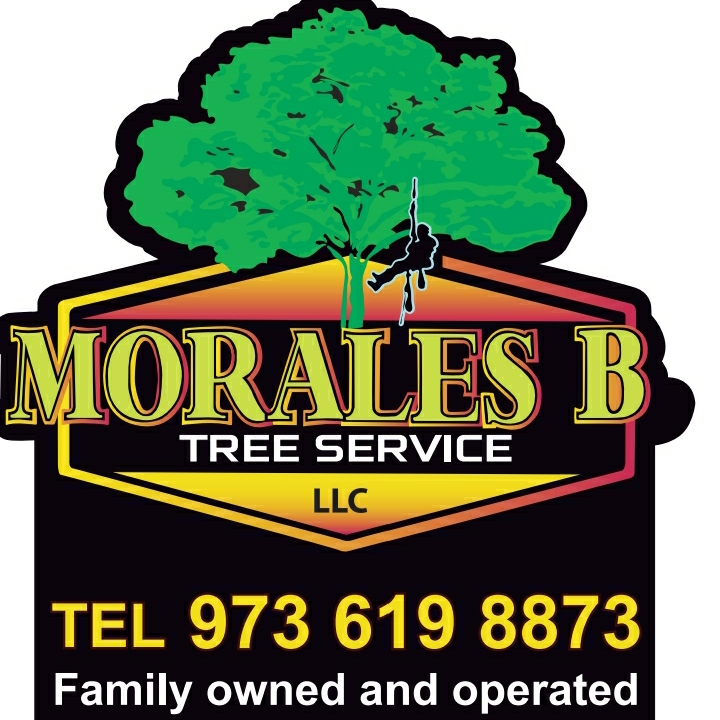 Morales Brothers Tree Service