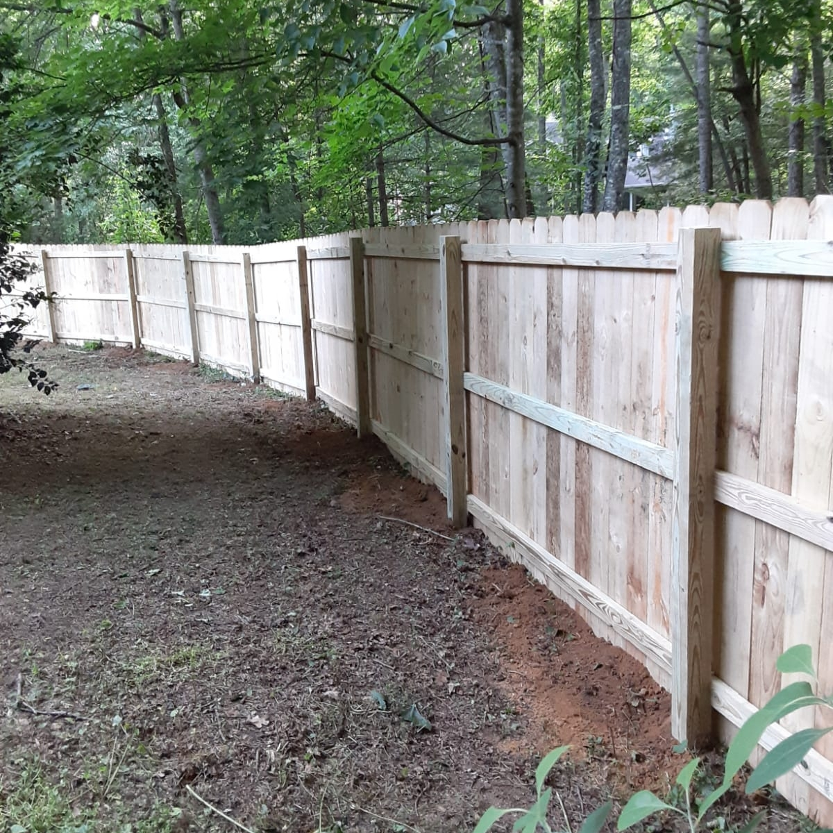 Babcat Fence and decking