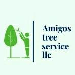 Amigos tree service llc