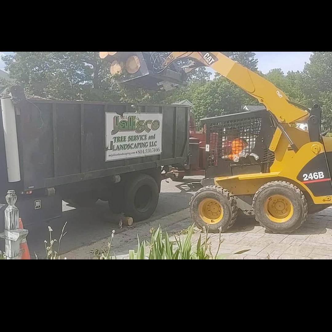 Mi Jalisco Tree Service LLC